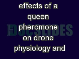 Primer effects of a queen pheromone on drone physiology and