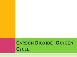 Carbon Dioxide- Oxygen Cycle