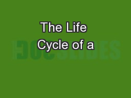 The Life Cycle of a