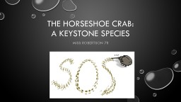 The horseshoe crab: