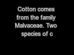 Cotton comes from the family Malvaceae. Two species of c