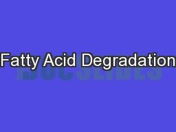 Fatty Acid Degradation PowerPoint PPT Presentation