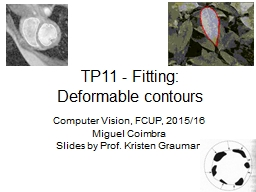 TP11 - Fitting: