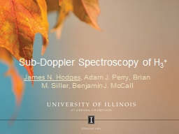 Sub-Doppler Spectroscopy of H