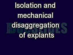 Isolation and mechanical disaggregation of explants