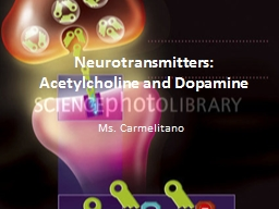 Neurotransmitters: Acetylcholine and Dopamine