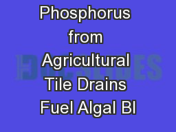 Does Phosphorus from Agricultural Tile Drains Fuel Algal Bl