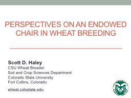 Perspectives on an Endowed chair in wheat breeding