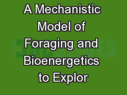 A Mechanistic Model of Foraging and Bioenergetics to Explor