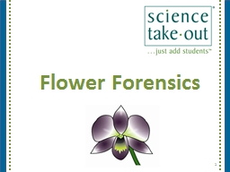 Flower Forensics PowerPoint PPT Presentation