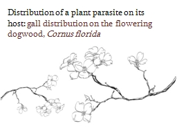 Distribution of a plant parasite on its host: PowerPoint PPT Presentation