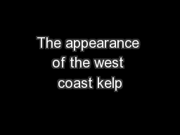 The appearance of the west coast kelp