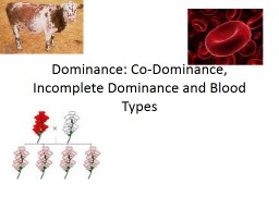 Dominance: Co-Dominance, Incomplete Dominance and Blood Typ