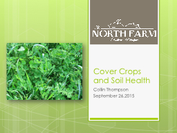 Cover Crops and Soil Health