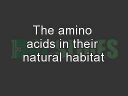 The amino acids in their natural habitat