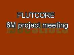 FLUTCORE 6M project meeting