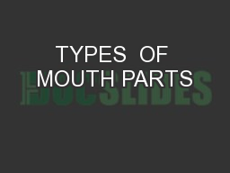 TYPES  OF MOUTH PARTS