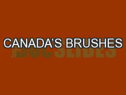 CANADA'S BRUSHES PowerPoint PPT Presentation