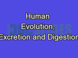 Human Evolution, Excretion and Digestion