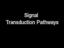 Signal Transduction Pathways PowerPoint PPT Presentation