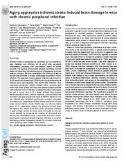 Aging aggravates ischemic strokeinduced brain damage i