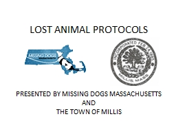 PRESENTED BY MISSING DOGS MASSACHUSETTS