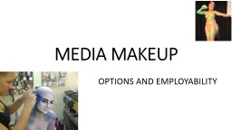MEDIA MAKEUP PowerPoint PPT Presentation