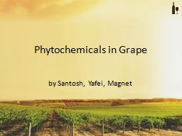 Phytochemicals in Grape
