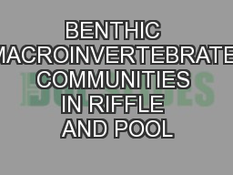 BENTHIC MACROINVERTEBRATE COMMUNITIES IN RIFFLE AND POOL