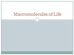 Macromolecules of Life PowerPoint PPT Presentation