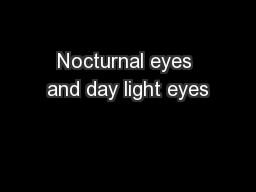 Nocturnal eyes and day light eyes PowerPoint PPT Presentation