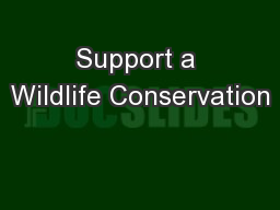 Support a Wildlife Conservation