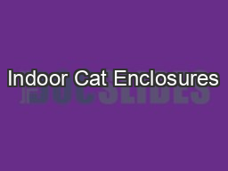Indoor Cat Enclosures PowerPoint PPT Presentation