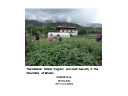 The National Potato Program and Food Security in the Mounta