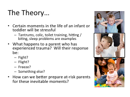 The Theory…