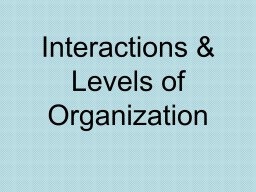 Interactions & Levels
