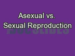 Asexual vs. Sexual Reproduction PowerPoint PPT Presentation