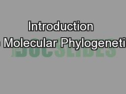 Introduction to Molecular Phylogenetics PowerPoint PPT Presentation