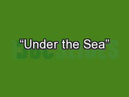 """Under the Sea"" PowerPoint Presentation, PPT - DocSlides"