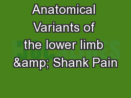Anatomical Variants of the lower limb & Shank Pain