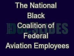 The National Black Coalition of Federal Aviation Employees