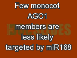 Few monocot AGO1 members are less likely targeted by miR168