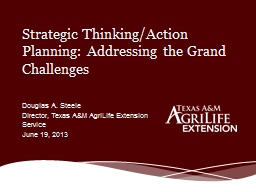 Strategic Thinking/Action Planning: