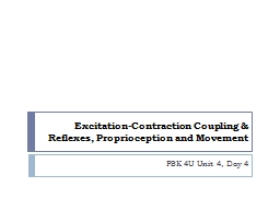 Excitation-Contraction Coupling PowerPoint PPT Presentation