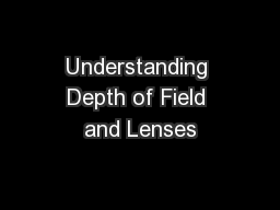Understanding Depth of Field and Lenses