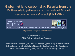 Global net land carbon sink: Results from the Multi-scale S