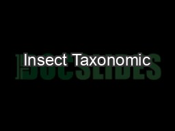 Insect Taxonomic