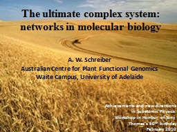 The ultimate complex system: networks in molecular biology