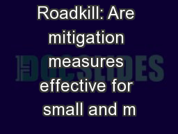 Roadkill: Are mitigation measures effective for small and m