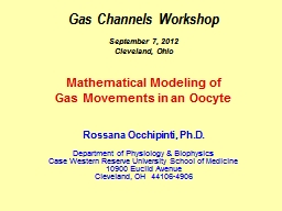 Gas Channels Workshop PowerPoint PPT Presentation